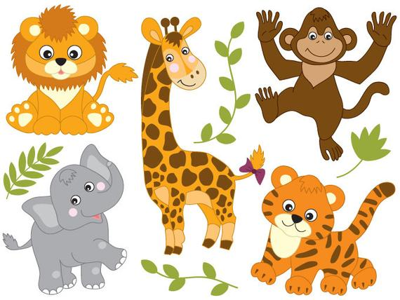 Animals genral knowledge for kids