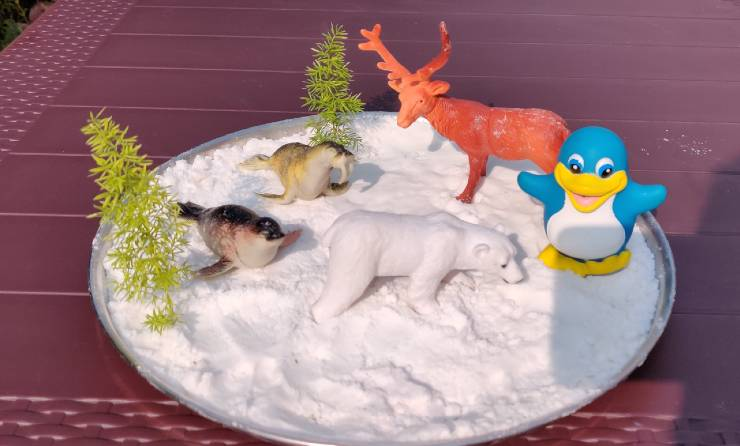 Artic animals with Fake Snow