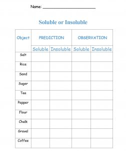 Soluble and Insoluble experiment Worksheet