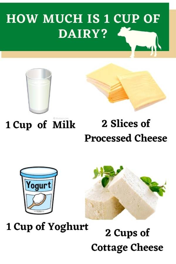 How much is one cup of dairy ?