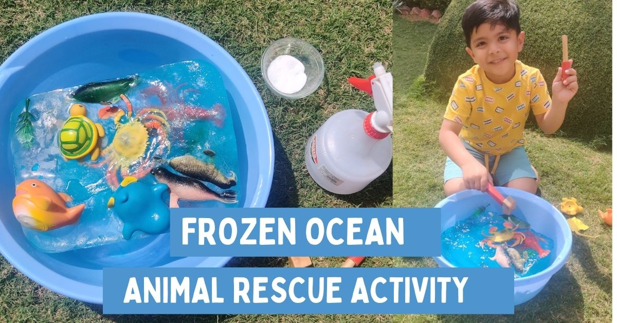 Frozen Ocean Animal Rescue Activity
