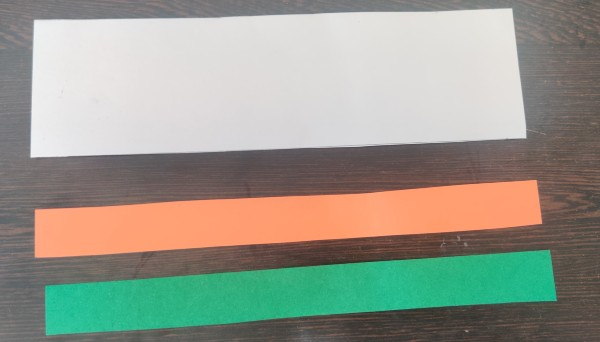 National Symbols of India National Flag Wristband supplies
