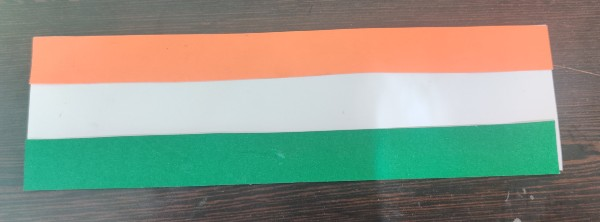 National Flag Wristband paste